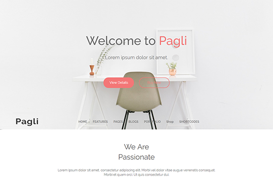 Pagli - Minimal WordPress theme